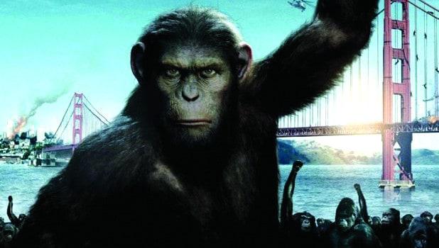 Qué pasó entre dos películas sobre simios?